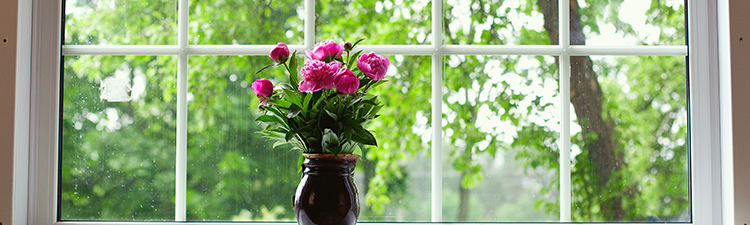 Window with flower